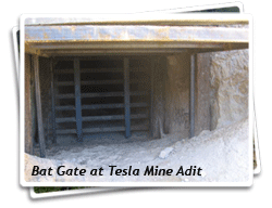 Photo of Tesla Mine Adit with Bat Gate Installed