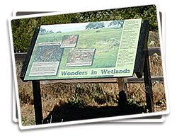 Interpretive Panel Photo