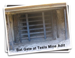 Bat Gate at Tesla Mine Complex