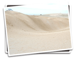 Photo of dunes at Ocean Dunes SVRA