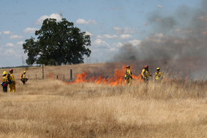 Prairie City SVRA Controlled Burn Photo 3