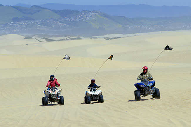 Family riding ATV's on the dunes