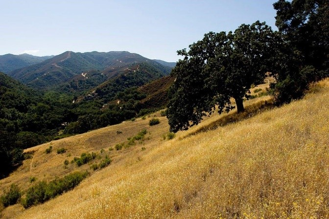 Hollister Hills SVRA