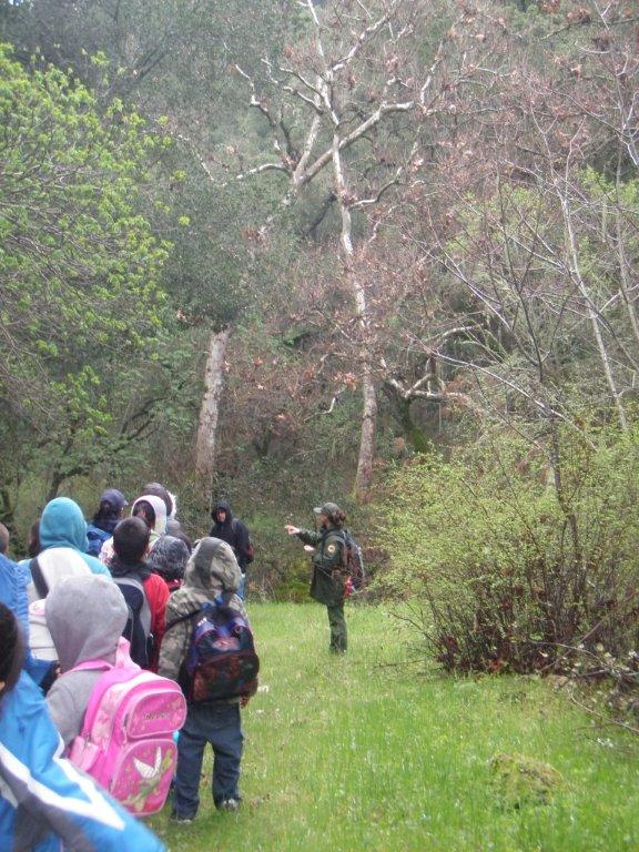 park staff leading students on guided hike