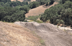 Photo of the MX Track at Hollister Hills SVRA